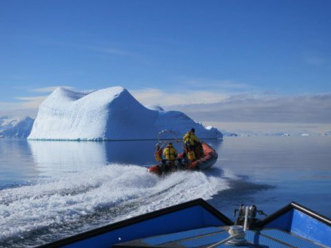 What Happened When Scientists Warmed the Antarctic Ocean by 1 Degree