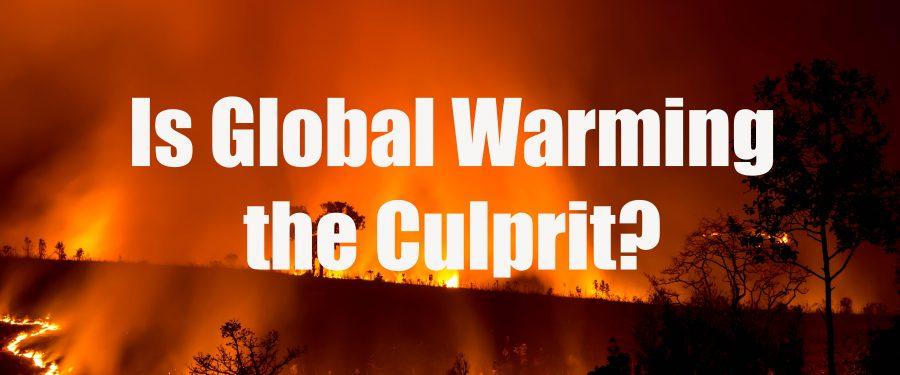 Australian Fire: Is Global Warming the Culprit?