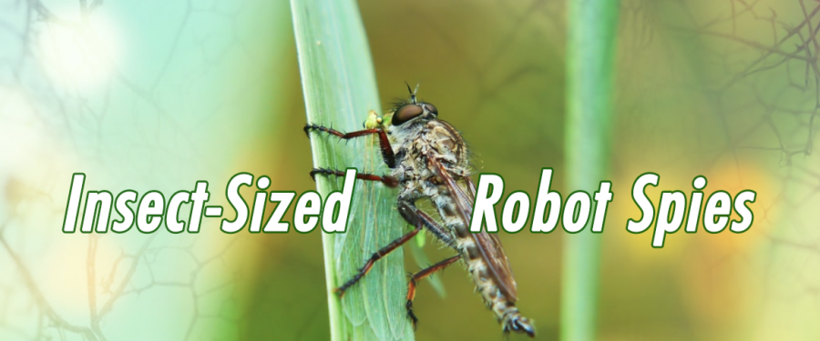 The Rise of Insect-Sized Robot Spies – Taking Espionage to Another Level